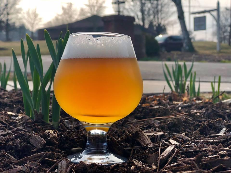 Beer in glass in spring garden
